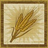 Retro- Getreideohren Lizenzfreies Stockfoto