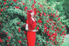 Retro girl with red lips in rose dress on beautiful flower background. Young redhead model in dress on a background of blossom royalty free stock photos