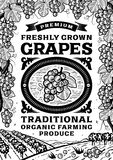 Retro grapes poster black and white Royalty Free Stock Photography
