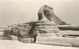 Retro Great Sphinx of Giza Royalty Free Stock Photography