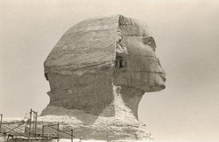 Retro Great Sphinx Head Royalty Free Stock Photography