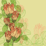 Retro greeting card with clover flowers and leaves Stock Photos
