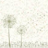 Retro greeting card with flowers. EPS 8. Retro greeting card with flowers and dandelion. EPS 8 vector file included Stock Photos