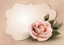 Retro greeting card with pink rose. Stock Photos