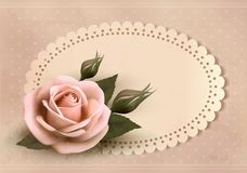 Retro greeting card with pink rose. Royalty Free Stock Photo