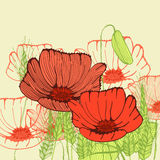 Retro greeting card with poppy flowers Royalty Free Stock Photo
