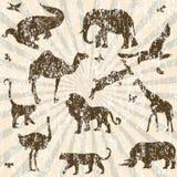 Retro grungeachtergrond met dierensilhouetten Royalty-vrije Stock Foto