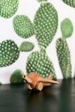 Retro- hölzernes Spielzeugflugzeug auf Tabelle mit Kaktushintergrund lizenzfreie stockbilder