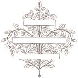 Retro hand draw decorative oak branch with ribbon. Vintage vector design Royalty Free Stock Images