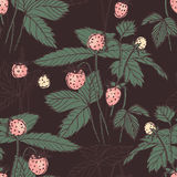 Retro hand drawn print  of fragaria on dark background. Vector seamless pattern for fabric Stock Photos