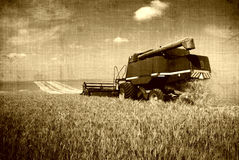 Retro harvest Royalty Free Stock Photography
