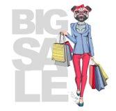 Retro het meisjespug van Hipster dierlijke hond Grote verkoop hipster affiche Royalty-vrije Stock Fotografie