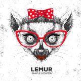 Retro Hipster animal lemur. Hand drawing Muzzle of animal lemur. Stock Photos