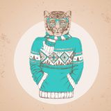 Retro Hipster fashion animal tiger dressed up in pullover. Royalty Free Stock Photo