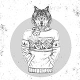 Retro Hipster fashion animal wolf dressed up in pullover. Stock Photo