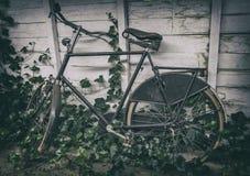 Retro holländsk cykel Royaltyfri Fotografi