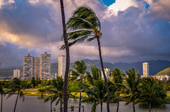 Retro Honolulu Hawaii Skyline Royalty Free Stock Photo