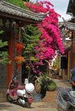 Retro hulajnoga i blossing bez na ulicie wewnątrz Zdjęcia Stock
