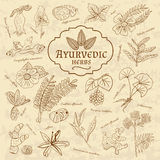 Retro illustration of Ayurvedic herbs. Set of web Stock Photo