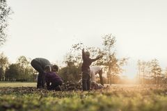 Retro image of family rejoicing in an autumn sunset throwing lea Stock Photography