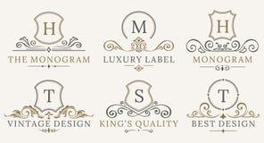 Retro insieme reale del Logotype degli schermi dell'annata Elementi di lusso di progettazione di logo del calligraphyc di vettore Immagine Stock