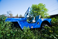 Retro jeep in overgrown weeds Royalty Free Stock Photography