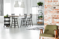 retro k che 2 vektor abbildung illustration von vorh nge 42095280. Black Bedroom Furniture Sets. Home Design Ideas