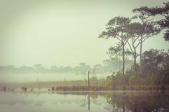 Retro kalmte door een meer bij ochtend. Stock Foto