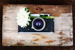 Retro kamera i kwiat Zdjęcie Royalty Free