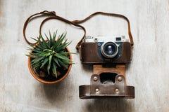 Retro kamera, lagd in växt Arkivbilder