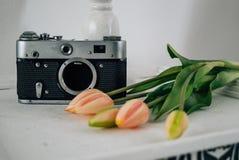 Retro kamera med blommor i vitt rum royaltyfri foto