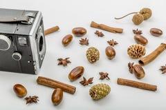 Retro kamera z sosna rożkami, anyżowym kwiatem, acorns i cynamonem, obraz royalty free