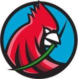 Retro kardinalHead Blade Grass cirkel Royaltyfri Bild