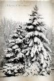 Retro karta z Wesoło bożymi narodzeniami, drzewami i jedlinowymi drzewami zakrywającymi wewnątrz, Obrazy Royalty Free