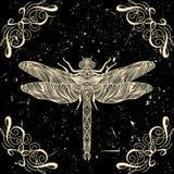 Retro- Karte mit Libelle und kalligraphisches dekoratives Element auf Schmutzhintergrund Stockbilder