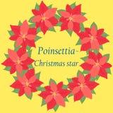 Retro Kerstkaart met bloempoinsettia Stock Foto
