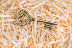 Retro key Stock Photography