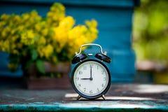 Retro `-klocka för nolla 9 Blommor i gammal träask Bakgrund för dagljusträdgård med utrymme för text Royaltyfria Foton