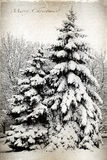 Retro kort med glad jul, träd och granträd som in täckas Royaltyfria Bilder