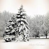 Retro kort med glad jul, träd och julgranar i sn Royaltyfri Fotografi