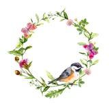Retro- Kranzgrenzrahmen mit wilden Kräutern, Wiesenblumen, Vogel und Schmetterlingen Weinleseaquarell Lizenzfreies Stockbild