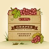 Retro krat van druiven stock illustratie
