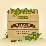 Retro krat van olijven Stock Afbeelding