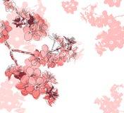 Retro kwiecisty tło z kwiatem Sakura ilustracja wektor