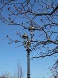 Retro lamppost Stock Photos