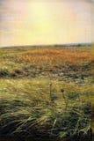 Retro landschap Nantucket, doctorandus in de letteren van de Herfst Stock Foto