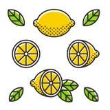 Retro lemon icon set Royalty Free Stock Photos