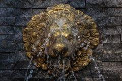 Retro Lion Statue Fountain, medan vattnet spiller på hennes framsida arkivfoto