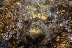 Retro Lion Statue Fountain terwijl het water op haar gezicht morst stock foto's