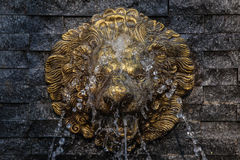 Retro Lion Statue Fountain while the water is spilling on her face.  Stock Photo